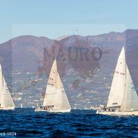 regataBardolino2015-1024