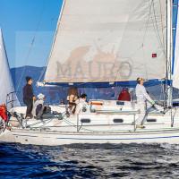 regataBardolino2015-1131
