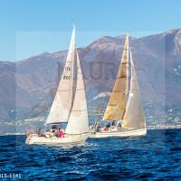 regataBardolino2015-1141