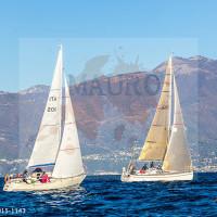regataBardolino2015-1143