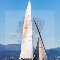 regataBardolino2015-1168