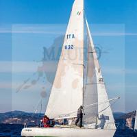regataBardolino2015-1173