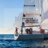 regataBardolino2015-1255