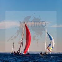 regataBardolino2015-1292