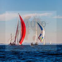 regataBardolino2015-1295