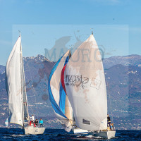 regataBardolino2015-1488