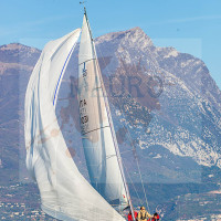 regataBardolino2015-1593