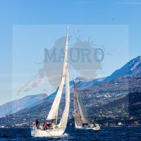 regataBardolino2015-1612