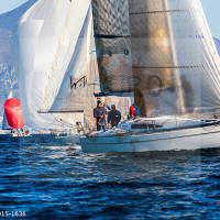 regataBardolino2015-1636