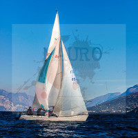 regataBardolino2015-1739