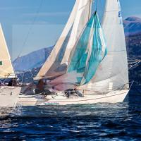 regataBardolino2015-1742