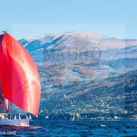 regataBardolino2015-1940