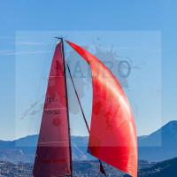 regataBardolino2015-1963