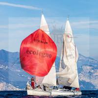regataBardolino2015-2746