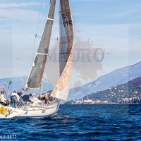 regataBardolino2015-2872