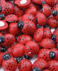 Coccinelle adesive 25mm