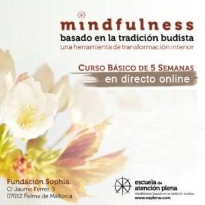 Curso online: Mindfulness MBTB (basado en la tradición budista) @ Fundación Sophia