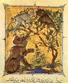 Il simbolismo dell'orso