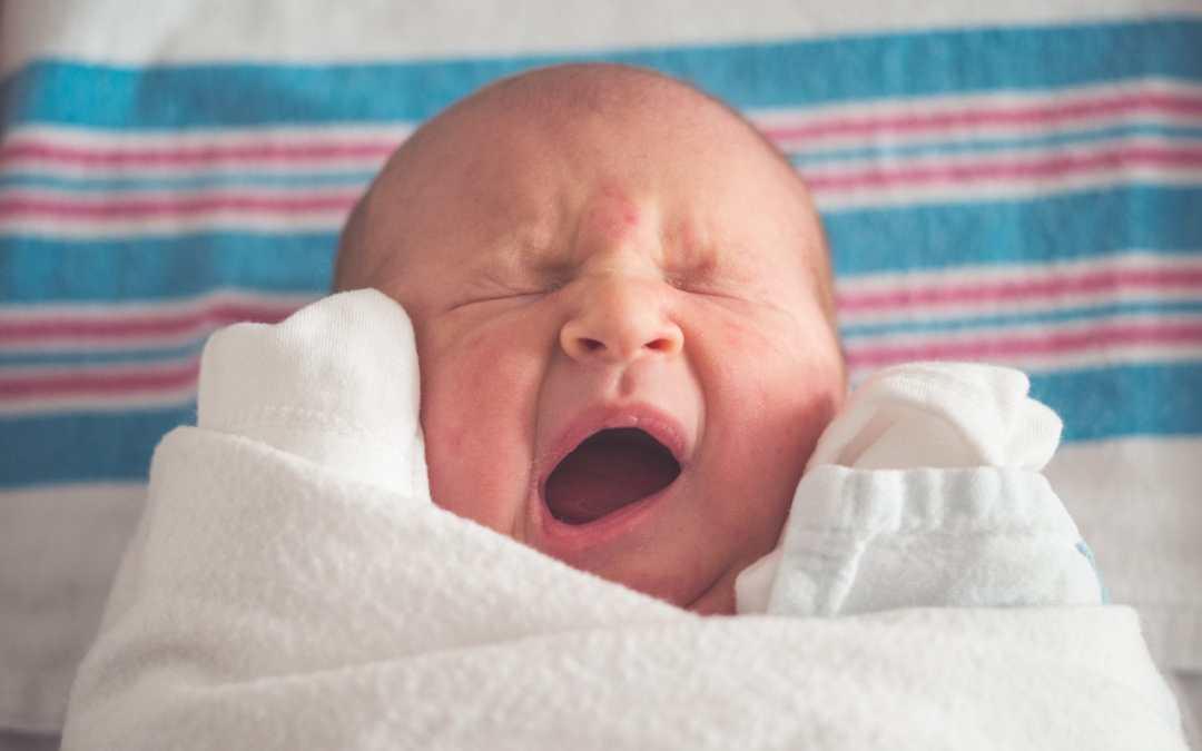 La Corte europea dei diritti dell'uomo dà ragione all'Italia sull'utero in affitto