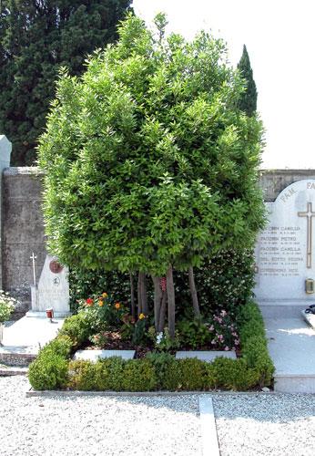Cimitero di Casarsa: tomba di Pasolini e della madre Susanna
