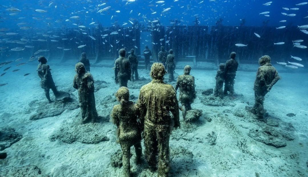 Museo Atlántico Sealife