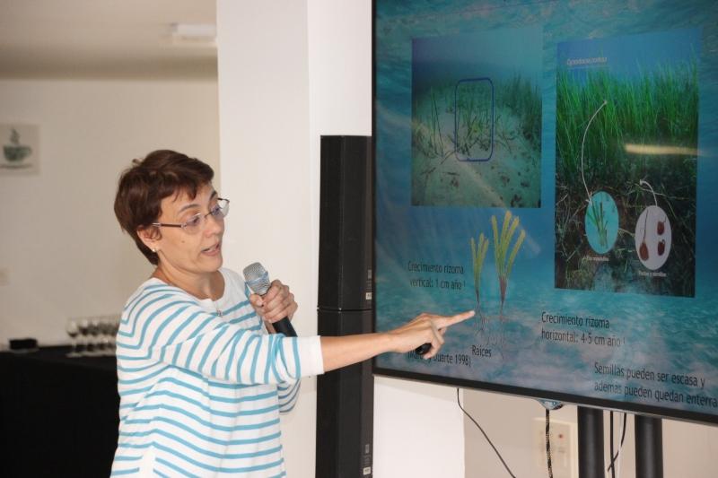 Pilar García proyecto Sebadal Museo Atlántico