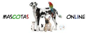 mascotas-online