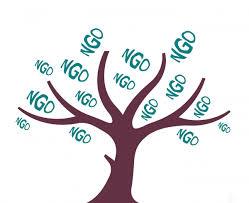 Rusza cykl szkoleniowo-doradczy dla NGOs