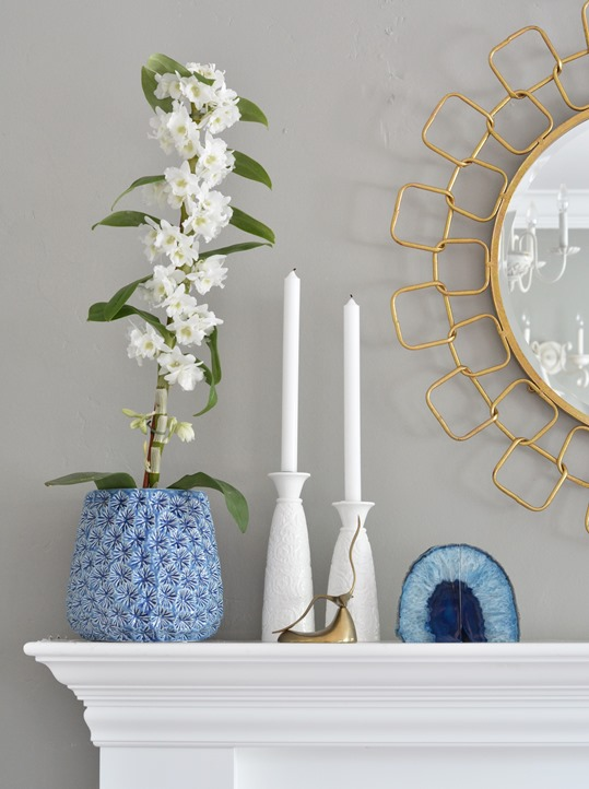 blue orchid pot chain link mirror
