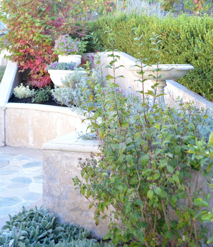 planter bed side view