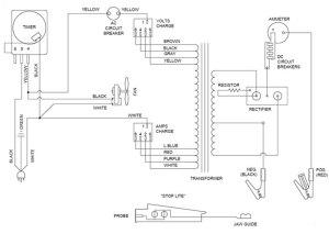 Dayton Battery Charger Wiring Diagram : 37 Wiring Diagram