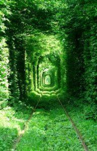 Tunnel de l'amour