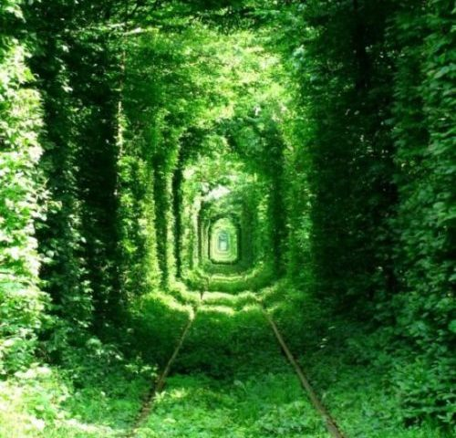 Tunnel de l'amour
