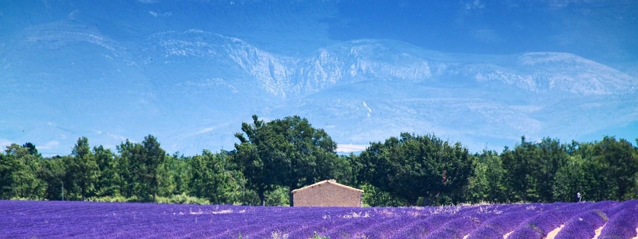 sejour dans les Alpes-de-Haute-Provence