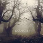 Cover: Pobedia - Movement