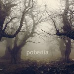 Cover: Pobedia - Movement