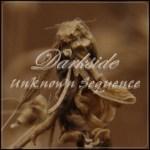 Darkside: Unknown Sequence