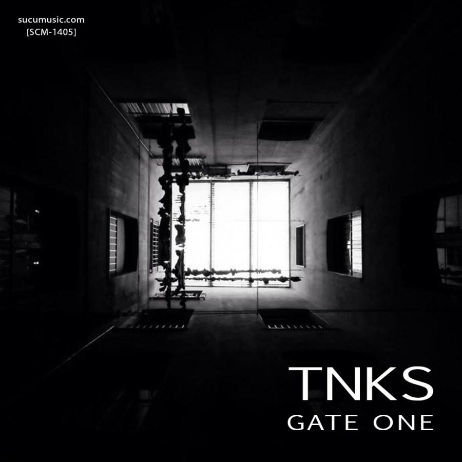 TNKS: Gate One