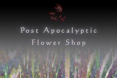 Intersonic Subformation: Apocalyptic Flower Shop