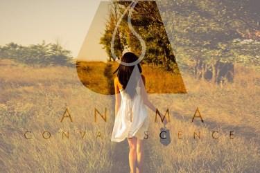 Anima: Convalescence