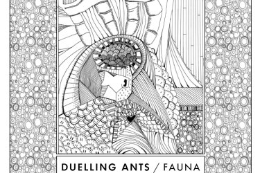 Duelling Ants: Fauna