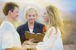 Seven Magic Mountains wedding ceremony