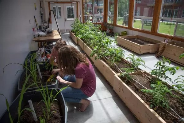 Custom greenhouse design and climate battery design