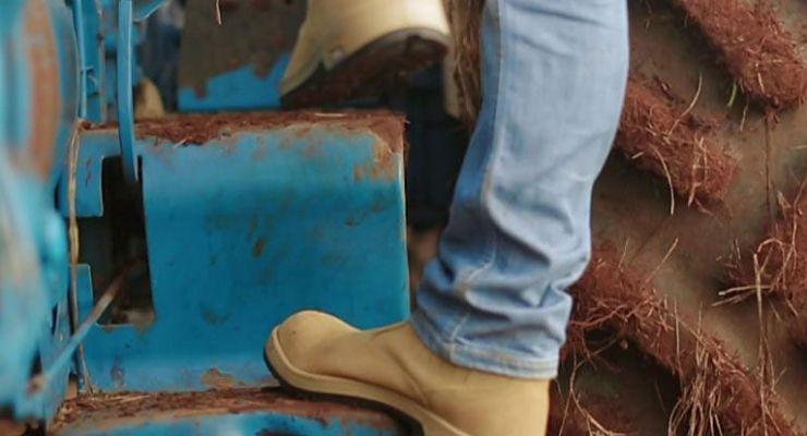 Calzado de seguridad por qué es importante la comodidad del pie