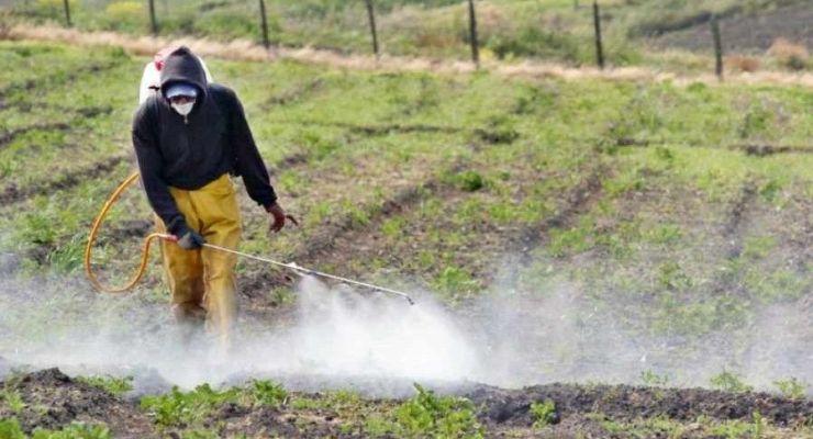 Peligros a la seguridad y salud en agricultura