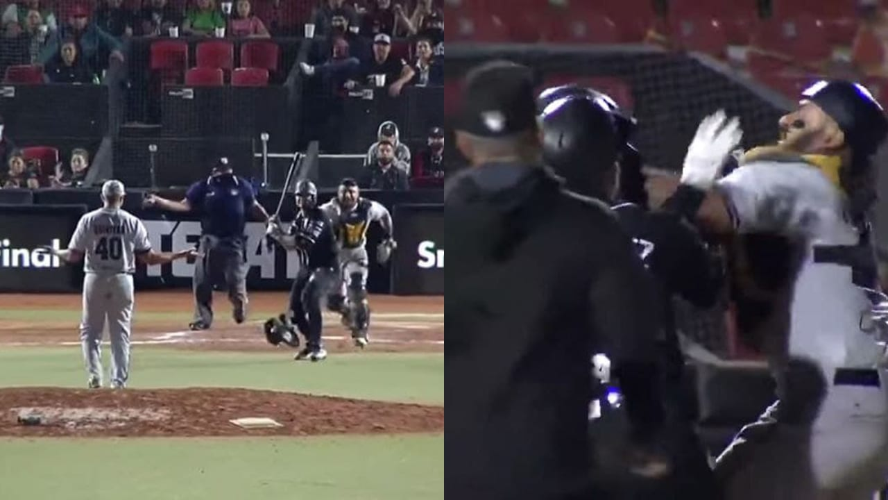 Liga Mexicana de Béisbol Toros Rieleros