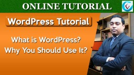 What is WordPress Thumb