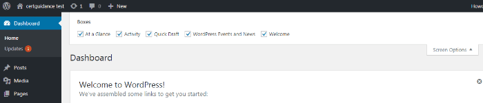 WordPress dashboard Screen Options Menu