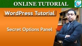 WP Secret Options Panel Thumb