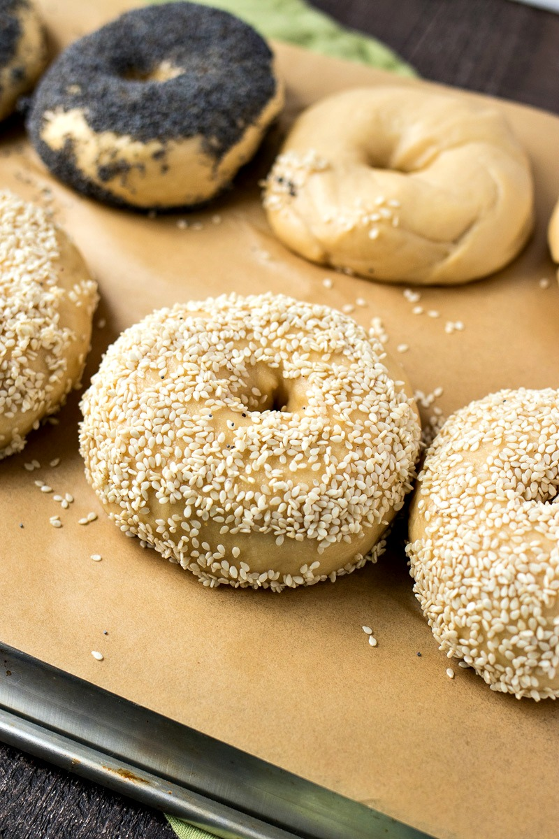 Cooked bagels covered in seasame seeds